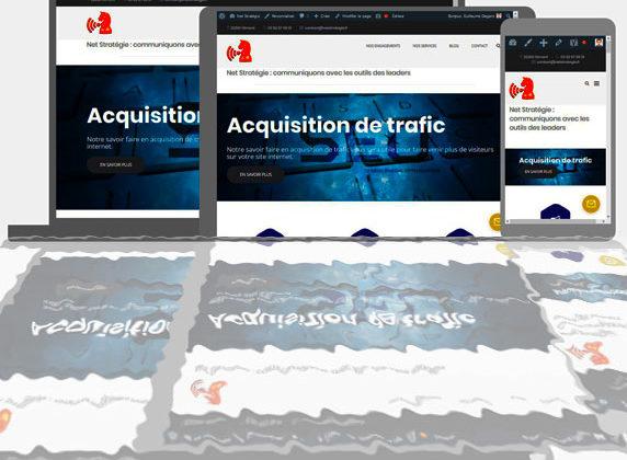 Site internet de Net Stratégie